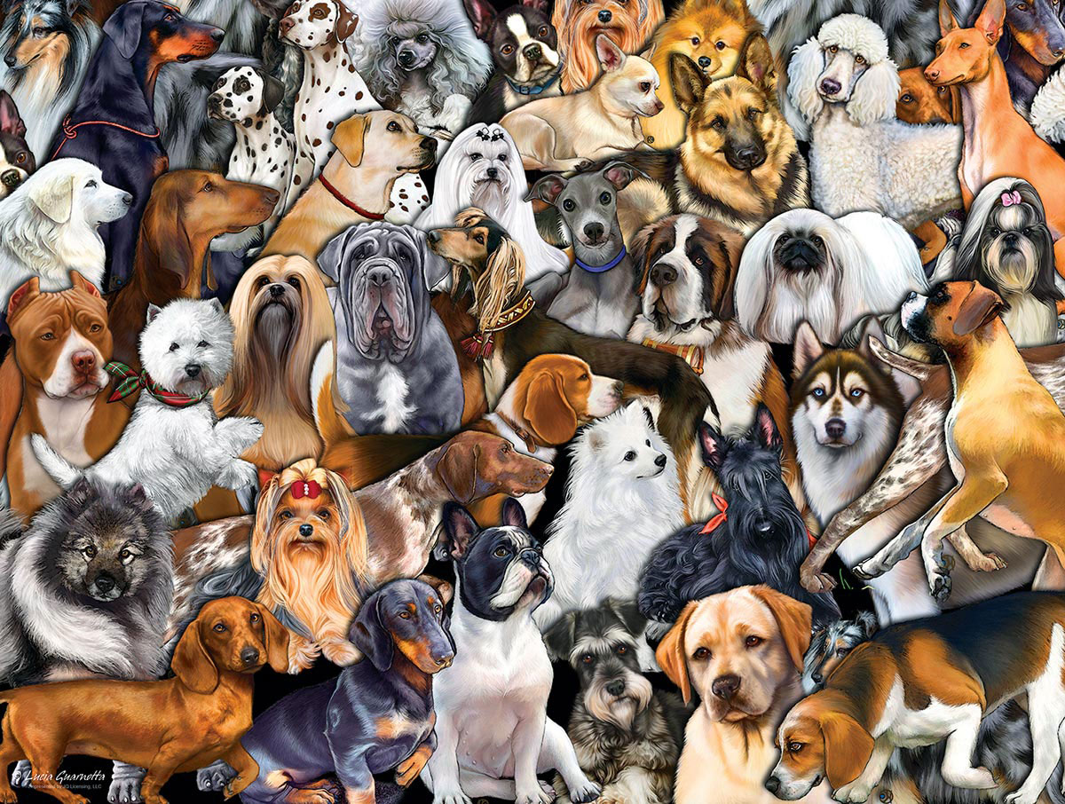 Friendly dogs breeds